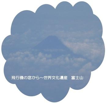 田中0501.jpg