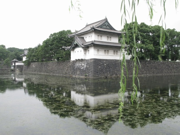 akiba20140301.jpg